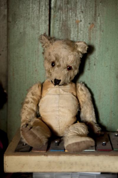 103_old_bear (1)