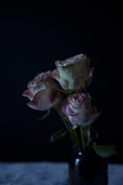 106_tutti_roses