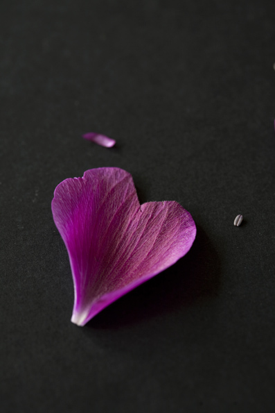 49-heart_petal