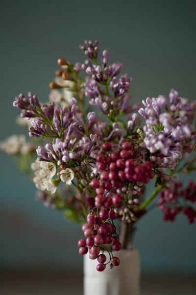 berries_0128