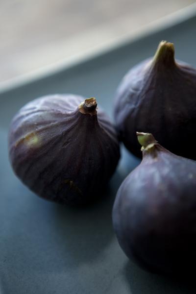 figs_8204