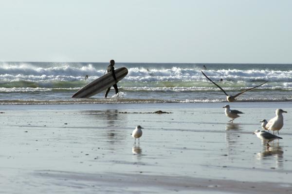cw_surfer_cornwall_tif