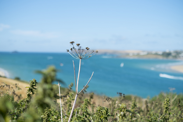 tregirls28Jul2014_0015