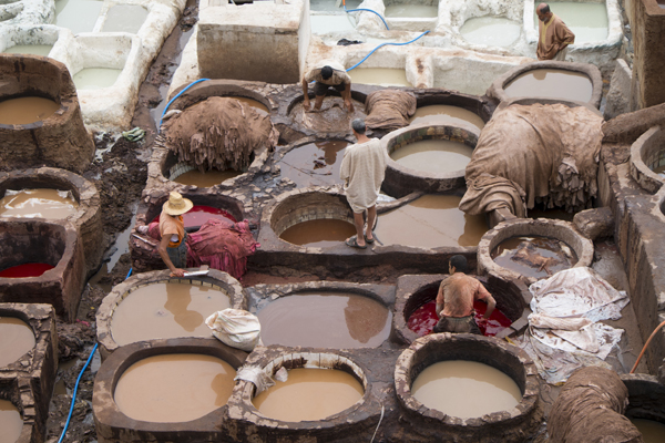 tannery20Sep2014_0102