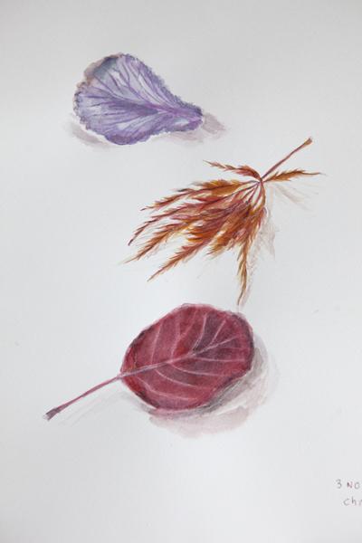 botanical11Nov2014_0025
