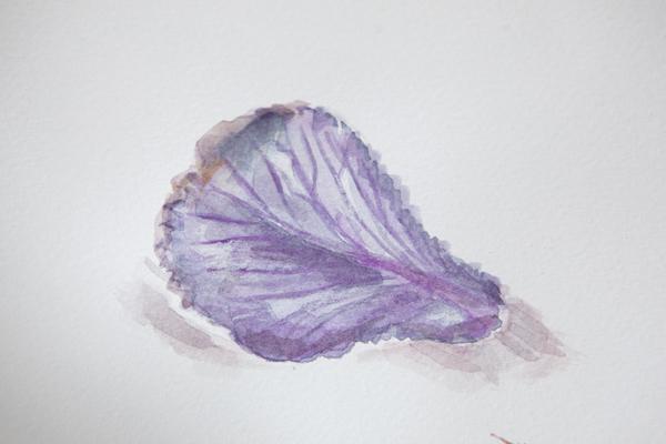 botanical11Nov2014_0028
