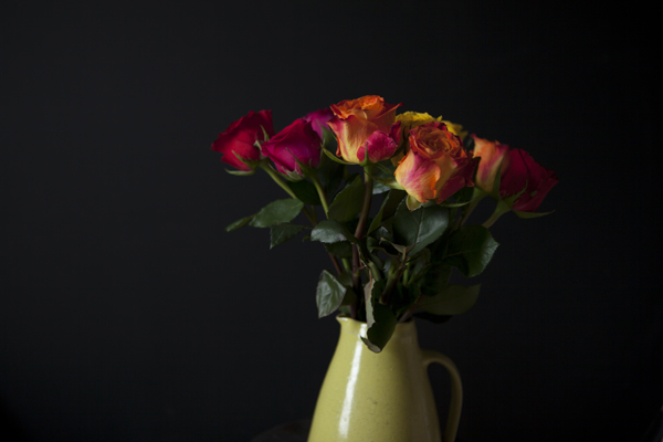 roses30Nov2014_0100