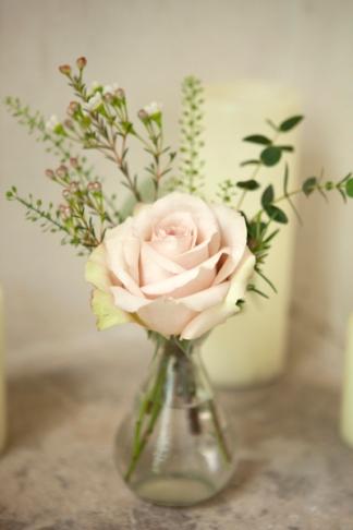 rose28May2015_0357
