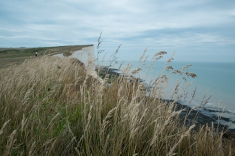 beachy_head28Jun2015_0047
