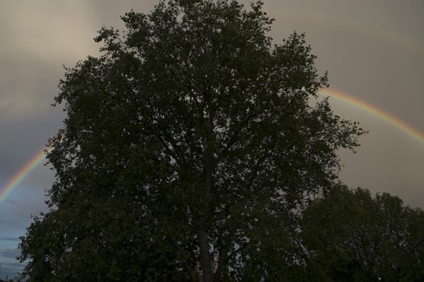rainbow02Sep2015_0041