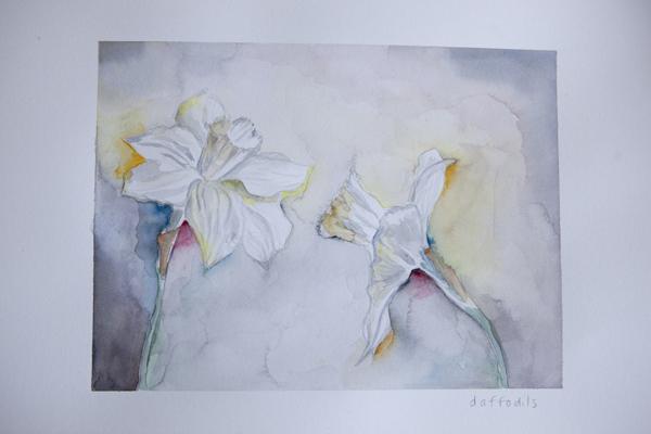watercolour_daffodils_0008