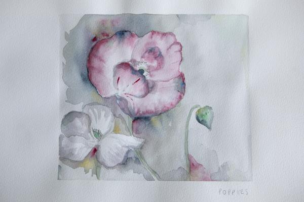 watercolour_poppies_0004