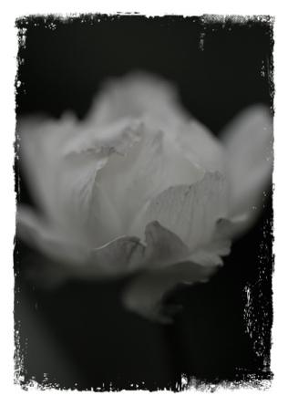51_vintage_flower