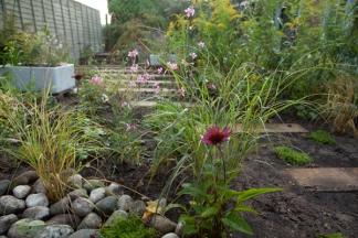 garden_0002