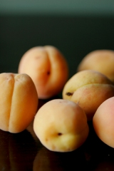 apricots_3739-1