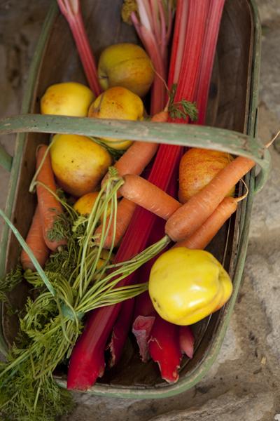 vegetables_0547-1