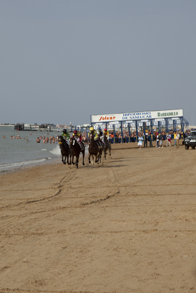 horse_racing_0195-1