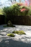 japanese_garden_0115