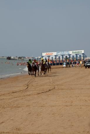 horse_racing_0195 (1)