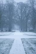 152_snowy_path