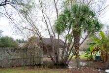whitney_plantation_grounds