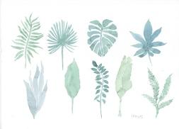 159_watercolour_leaves